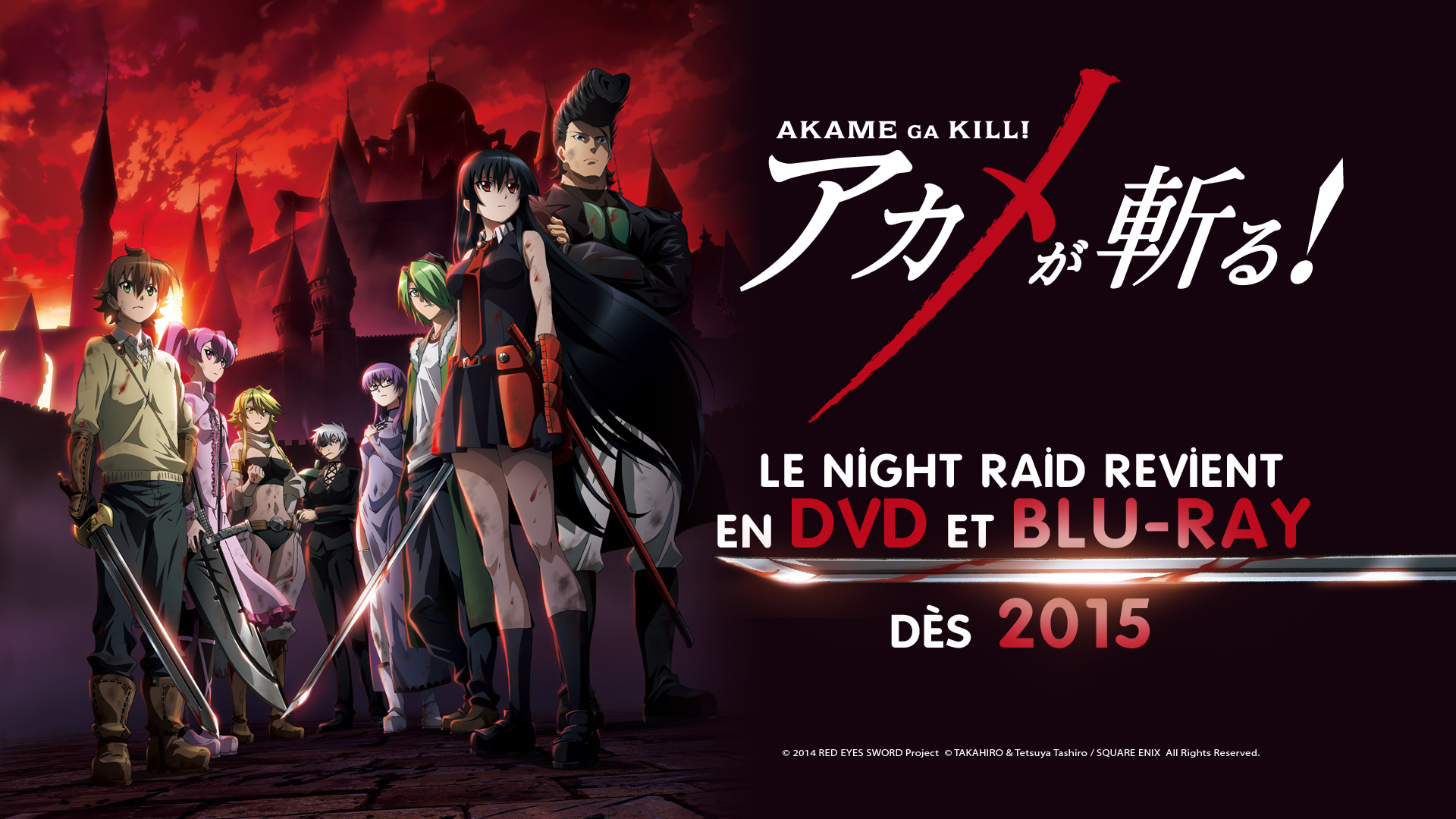 [AKAME GA KILL] La sortie DVD et Blu-ray pour 2015 !